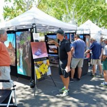 Arts in the Plaza Fine Art & Jazz Festival